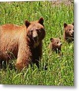 The Three Bears Metal Print