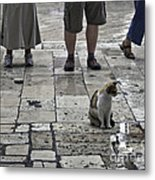 The Tourists Metal Print