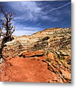 The Trail Ahead Metal Print