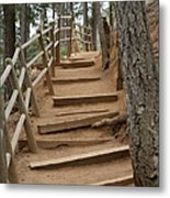 The Trail To The Top Metal Print