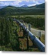 The Trans-alaska Pipeline Runs Metal Print