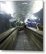 The Travelator At The Underwater World In Sentosa In Singapore Metal Print