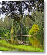 The Tree By The Lake Metal Print