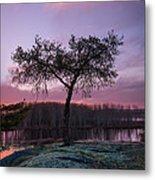 The Tree Of Life Metal Print by Dustin Abbott