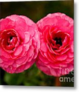 The Twin Love Metal Print