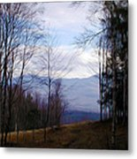 The Vermont Woods - Stowe Metal Print