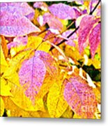 The Warm Glow In Autumn Abstract Metal Print