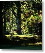 The Way To The Old Tree Metal Print