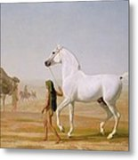 The Wellesley Grey Arabian Led Through The Desert Metal Print