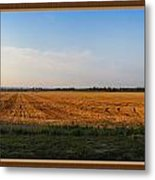 The Wheat Is In Metal Print