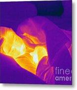 Thermogram Of A Sleeping Girl Metal Print