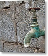 Thirsty Metal Print by Stelios Kleanthous
