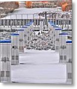 This Cold's For The Birds Metal Print
