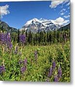 This Is British Columbia No.70 - Summer At Mount Robson Metal Print