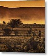 This Is Namibia No. 12 - Walking The Desert Metal Print by Paul W Sharpe Aka Wizard of Wonders