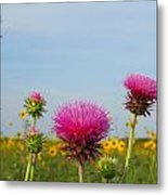 Thistle And Sunflower 2am-110468 Metal Print