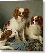 Three Cavalier King Charles Spaniels On A Rug Metal Print