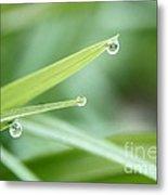 Three Droplets Metal Print