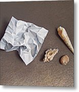 Three Shells For Collection Metal Print
