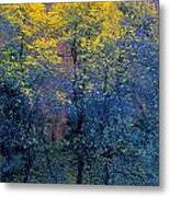 Three Thin Autumnal Trees In Front Of Metal Print
