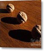 Three Walnuts Photograph Metal Print