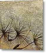 Three Wishes Metal Print by Artist and Photographer Laura Wrede