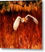Through The Fire Metal Print