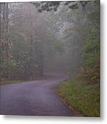 Through The Forest Dark And Deep 0 Metal Print