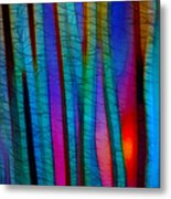 Through The Trees Metal Print by Judi Bagwell