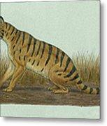 Thylacosmilus Atrox, A Genus Metal Print