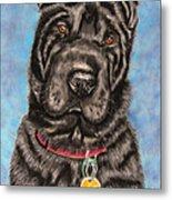 Tia Shar Pei Dog Painting Metal Print