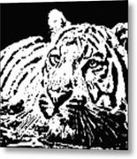 Tiger 2 Metal Print