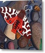 Tiger Moth On River Rocks Metal Print by Amy Reisland-Speer