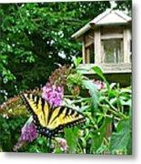 Tiger Swallowtail By The Bird Feeder  Metal Print