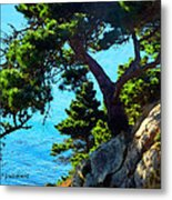 Timber Cove In Sonoma Coast Metal Print