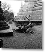 Timber In The Temple. Metal Print