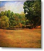 Timbers Pond Metal Print by Jai Johnson