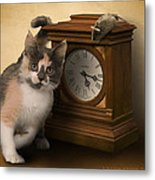 Time For Cat And Mouse Metal Print