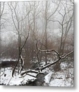 Time For Reflection  Metal Print