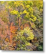 Time For The Change Metal Print