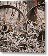 Time Forgotten Metal Print