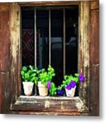 Time Worn Window With Bright Flowers Metal Print