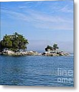 Tiny Island Off Vancouver Island Metal Print