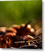 Tiny Shrooms Metal Print