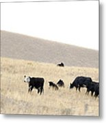 Tipping Cows Metal Print