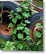 Tires And Ivy Metal Print