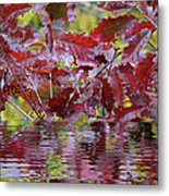 Tn Fall Water Metal Print