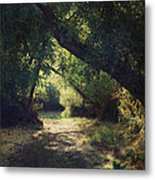 To My Happy Place Metal Print