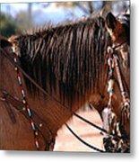 Tombstone Horse Metal Print