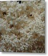 Tooth Fungus Metal Print